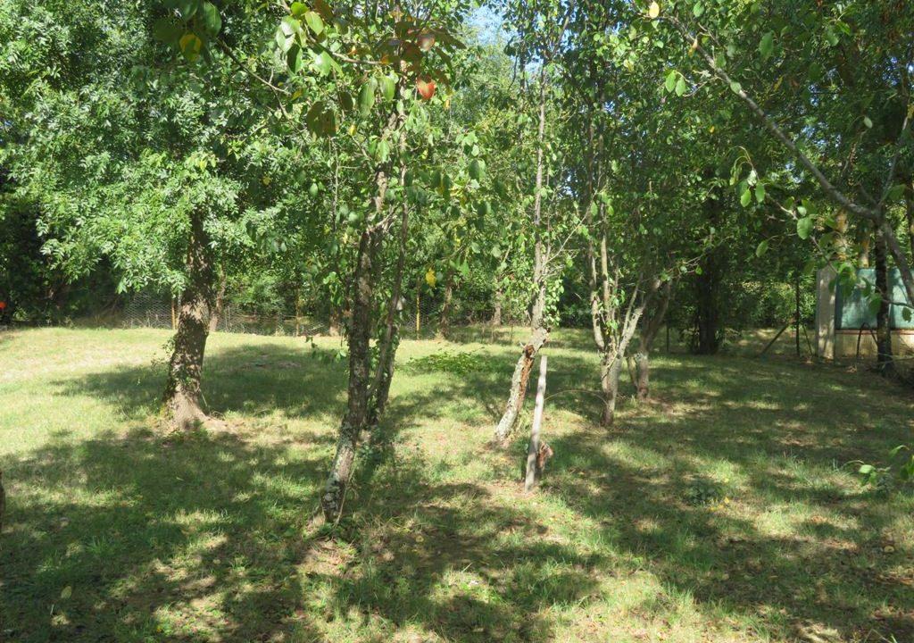 is-022-maison-rieumes-jardin-1