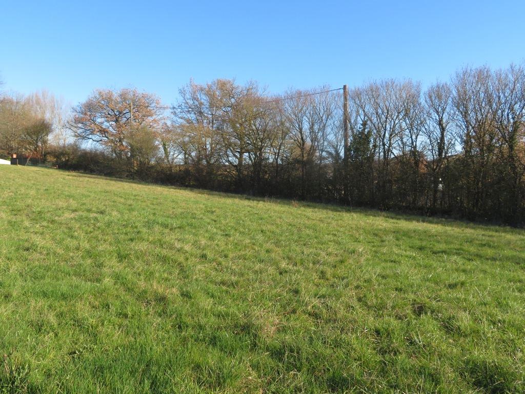 A 5 mn de Rieumes, 2 terrains à bâtir de 3000 m² et 3100 m².