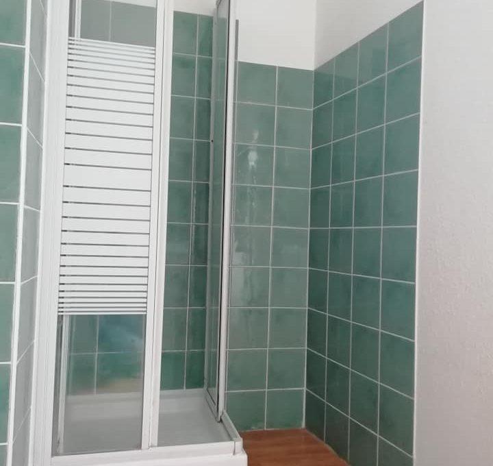 ss 110 appartement T2 centre rieumes salle deau