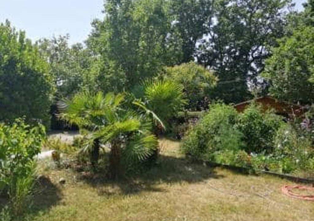 is 017 berat maison de village centre jardin 2