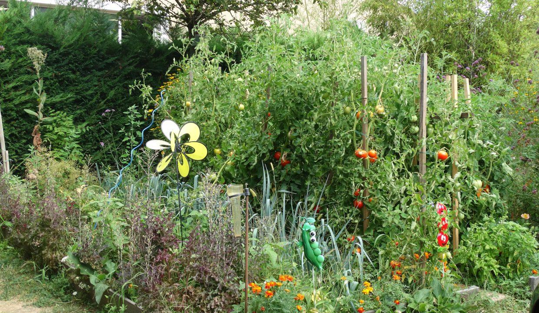 is 017 berat maison de village centre jardin potager 2