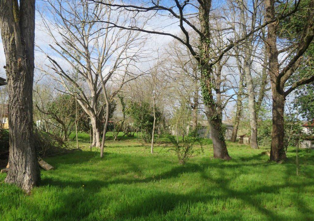 is 130 rieumes terrain a lotir jardin