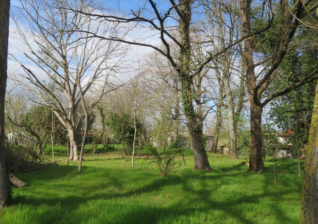 is 130 rieumes terrain a lotir jardin 2