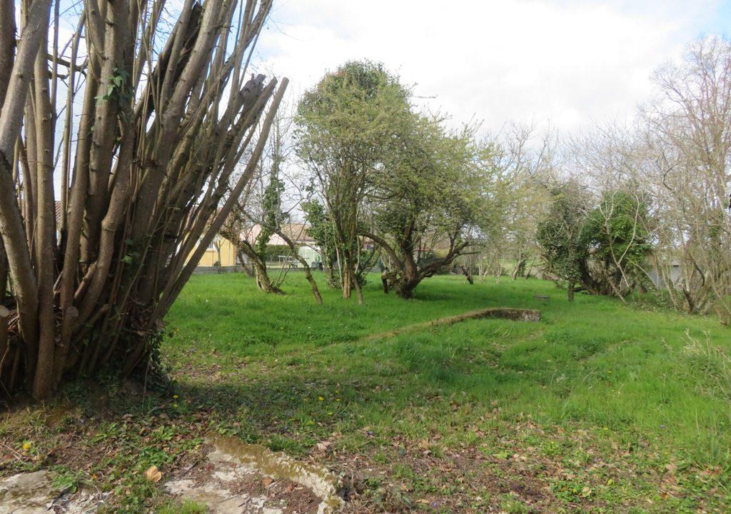 is 130 rieumes terrain a lotir jardin 3