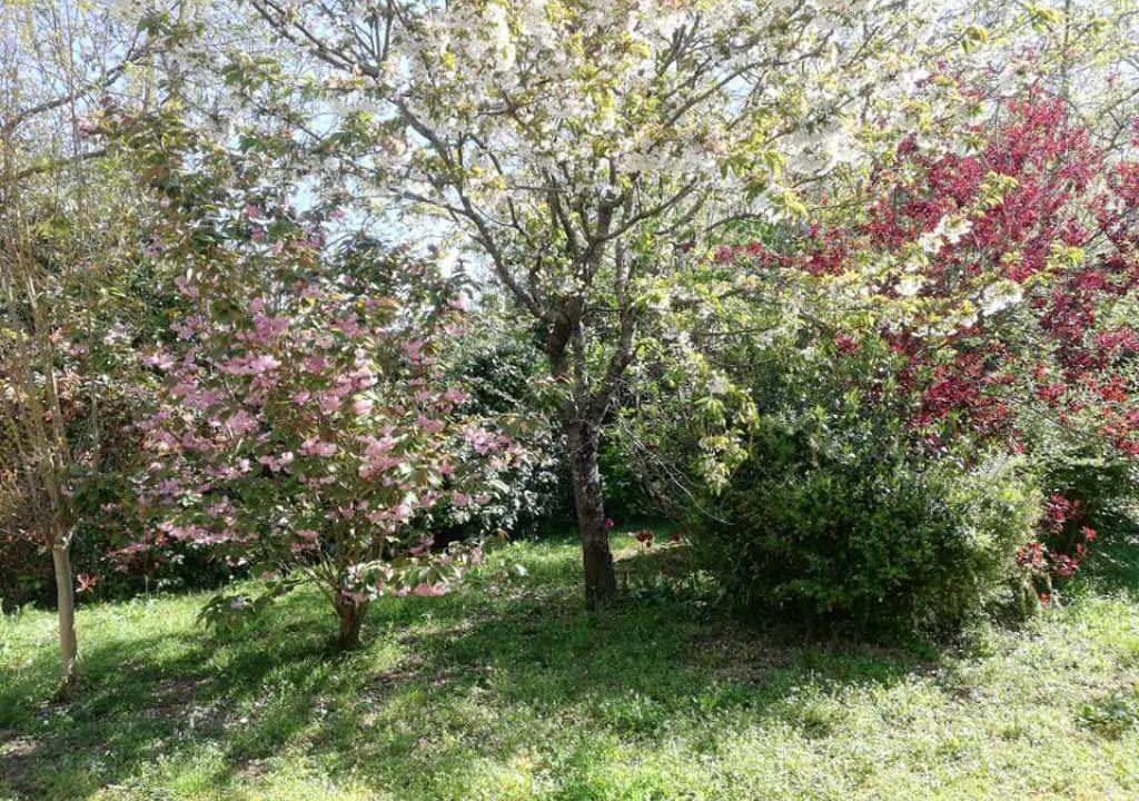 is 001 villa rieumes centre jardin