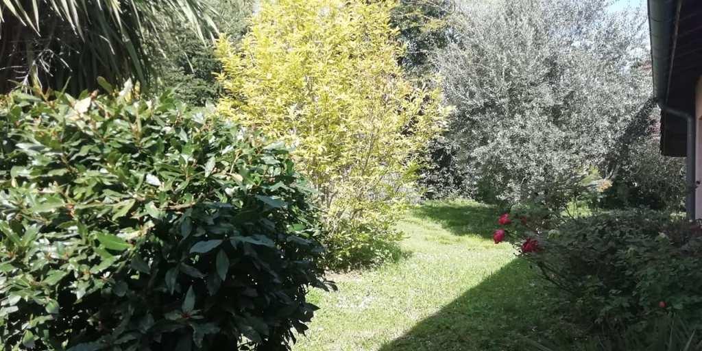 is 001 villa rieumes centre jardin 3