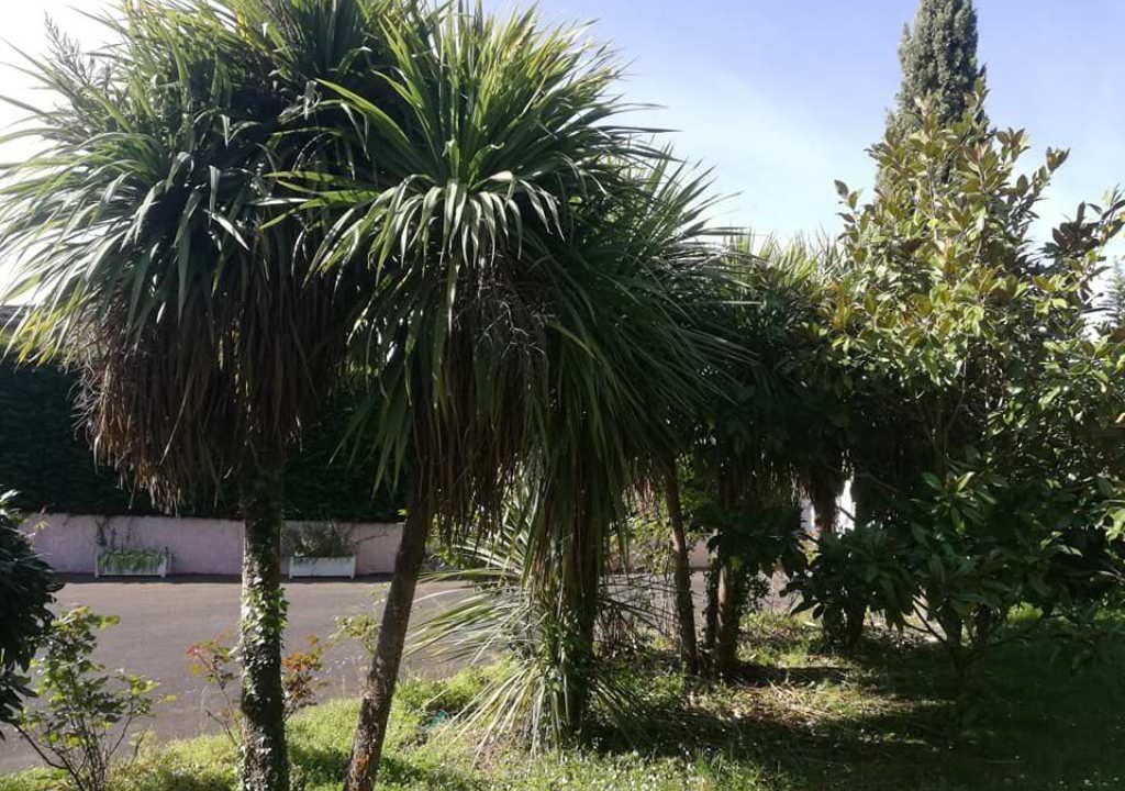 is 001 villa rieumes centre jardin 4