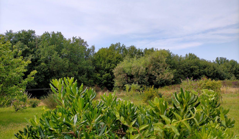 is 017 canton de rieumes jardin vue foret